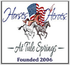 Helping families in need & our Las Vegas / national military population with their world renown horse ranch & activities for children